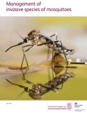 Management of invasive species of mosquitoes